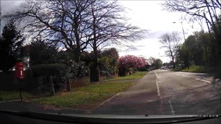 Why Did the Cyclist Cross the Road? - Video