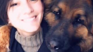 Taking a Selfie with Your German Shepherd
