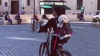 Pup goes for bike ride in Rome