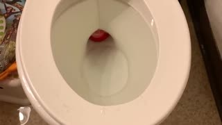 Christmas ornament toilet fail