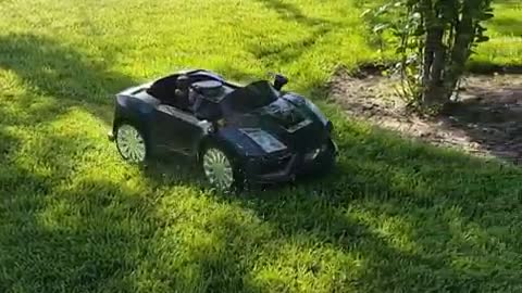 Homemade Remote Controlled Lamborghini Lawn Mower