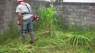 grass cutting machine cutting grass v fastily around the homes - Video