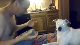 Dog Is Amazed And Upset By Man's Magic Trick - Video