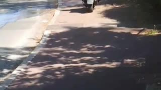 Guy driving moped motorcycle on sidewalk runs into pole - Video