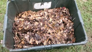 How to Compost Leaves Faster