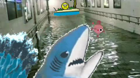 Funny, shark in the subway