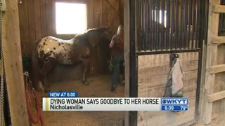 Dying Woman Says Goodbye To Her Horse! - Video