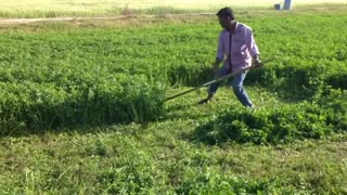 grass cutting machine in india  - Video