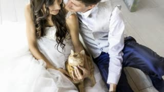 Cat Lovers Make Sure Their Pets Participate In Wedding