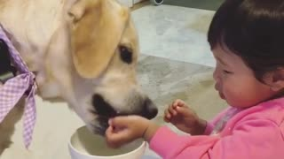 Girl is sharing a meal with a her dog - Video