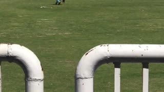 Gujrat super league of T20 cricket in gujrat pakistan  - Video