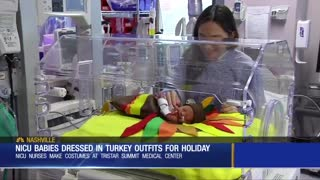 World's Cutest Turkeys: Hospital Makes Special Outfits For Babies