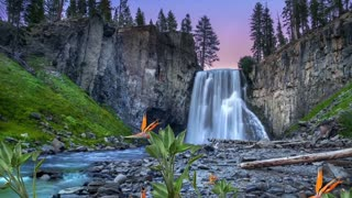 Relaxation Music Relaxing Music for Sleeping, Healing Music, Meditation Music, Sleep Music