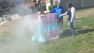 Gender Reveal Party Doesn't Go As Planned, Has A Surprising End - Video