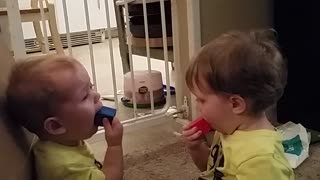 Twin brothers adorably share toys - Video
