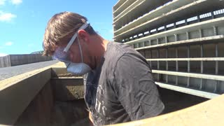 Mama Cat and Her Kittens Rescued from Storm Water Drain - Video