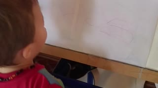 Toddler Knows His Alphabet - Video