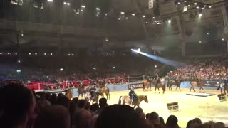 Outstanding Performance On The London International Horse Show