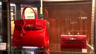 Jane Birkin and Hermes resolve differences over croc handbag - Video