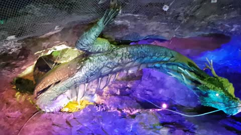 Dragon In Korean Cave
