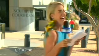 Parrot freaks out reporter - Video