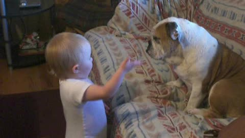 Baby Has Engrossing Conversation With Her Patient Bulldog