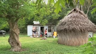 Organic farming culture becomes burgeoning business for Fiji islanders - Video