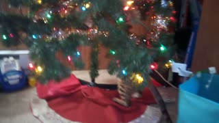 Bengal Cat Tries To Take Down The Tree