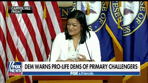 Democrats purging pro-life progressives putting party 'in jeopardy,' leader warns