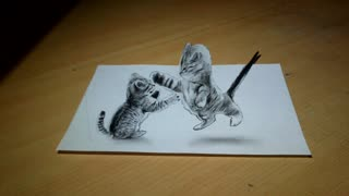 Anamorphic Illusion 3D : Crazy cats drawing - Video