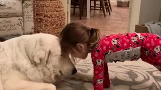 Little girl sweetly bonds with adorable pup - Video