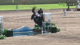 This Horse Went Extreme On A Jumping Show! - Video