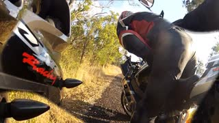 Motorcycle Hits Kangaroo