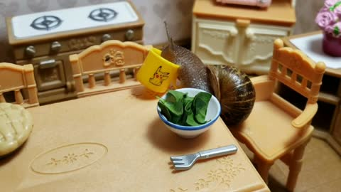 Tiny snail eats breakfast in tiny kitchen