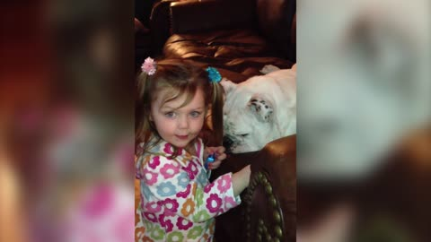 Bulldog Gets Spa Treatment By Baby Sister