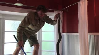 Catching a Snake, Literally