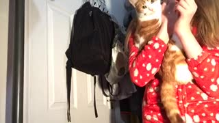 Cat Does Not Like Kisses