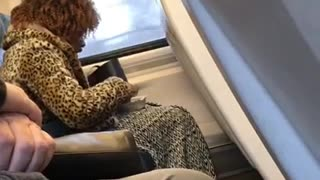 This lady really eating chicken and rice at 7am on train - Video
