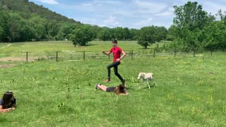 Miniature Horse Uses People as Hurdles