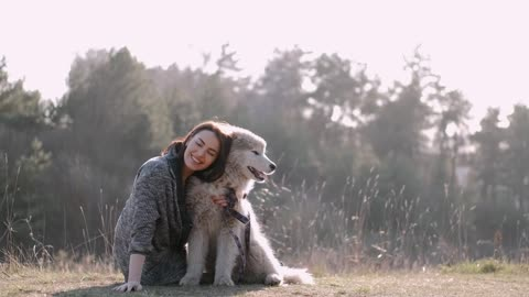 People Love Dogs Stock Footage Royalty free, No copyright