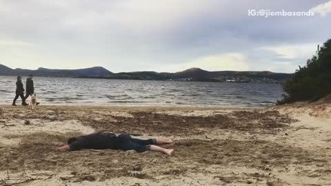 Guy face plants on sand dog runs over