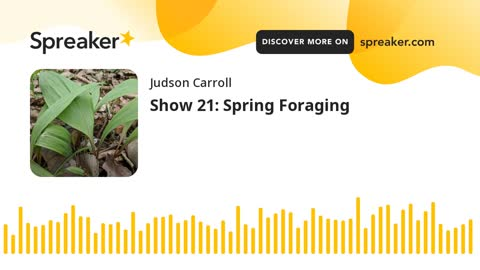 Show 21: Spring Foraging (part 3 of 3)