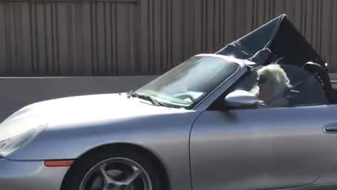 Blonde lady driving with huge tv in passenger seat coupe