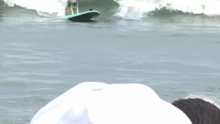 Surfing Dogs Collide Onto One Surfboard - Video