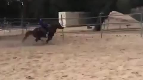 MOM PLEASE, I REALLY WANT TO LEARN TO RIDE A HORSE