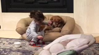 Little girl shares cereal with her puppy - Video