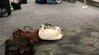 Multiple People Killed During Shooting at Fort Lauderdale Airport on January 6, 2017 - Video