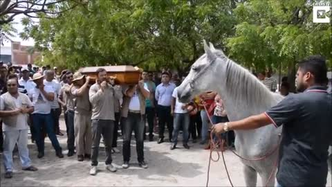 Horse Lays His Head On Coffin And Mourns The Loss Of His Owner