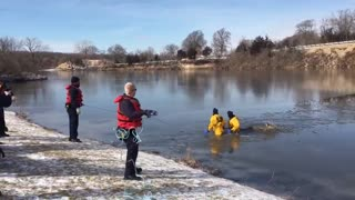 Firefighters Rescue Deer That Fell Through Lake Olathe Ice - Video