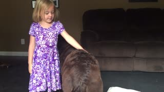 Child Vigilantly Watches Huge Puppy - Video